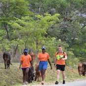 running for wild dogs 2017 88